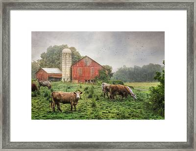 Mifflintown Farm Framed Print by Lori Deiter