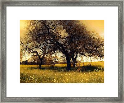 Might Oak Framed Print