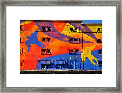 Migrate Detail 2 Framed Print by Matthew Chapman