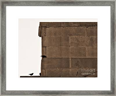 Migration Layover Framed Print by Lin Haring
