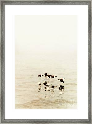 Migration Framed Print by Margie Hurwich