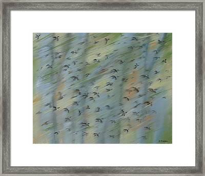 Migratory Geese Moon April Framed Print by Ethel Vrana