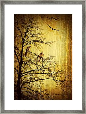 Migratory Framed Print by Lourry Legarde