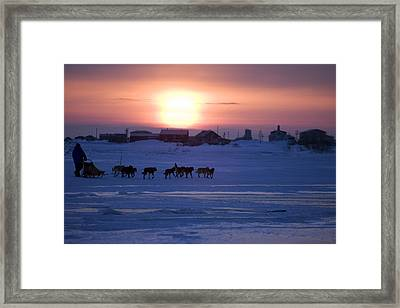 Mike Jayne Mushes Inbound To Unalakleet Framed Print