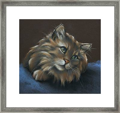 Miko Framed Print by Cynthia House