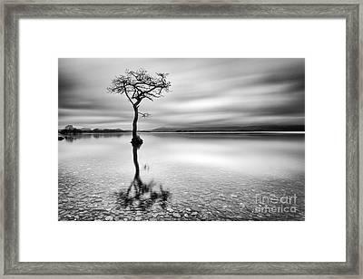 Milarrochy Bay Print Framed Print by John Farnan