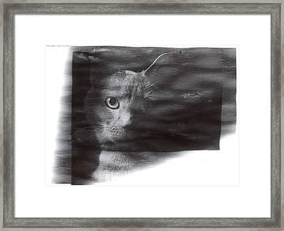 Miles Framed Print