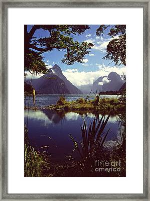 Milford Sound In New Zealand's Fiordland National Park Framed Print by Alex Cassels