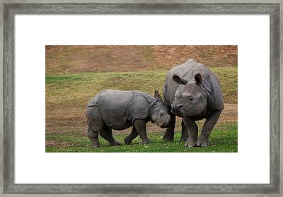 Mili And Sundari  Framed Print by Steve LLamb