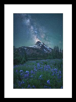Snowy Night Night Framed Prints