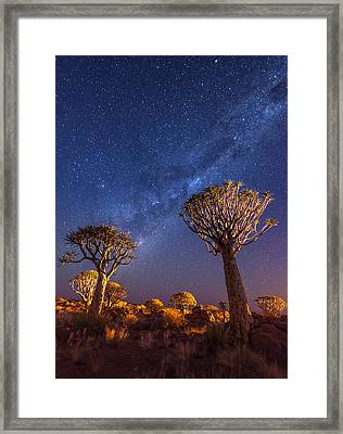 Milky Way Over Quiver Trees - Namibia Night Photograph Framed Print by Duane Miller