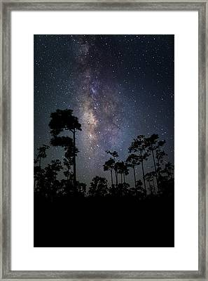 Milky Way Over The Everglades Framed Print by Andres Leon