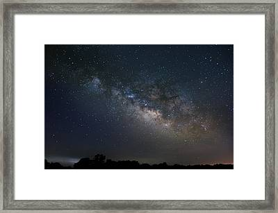 Framed Print featuring the photograph Milky Way Above The Trees by Todd Aaron