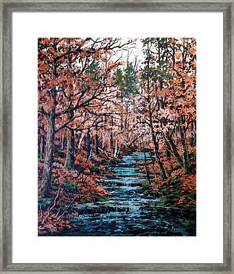 Mill Creek Framed Print by W  Scott Fenton