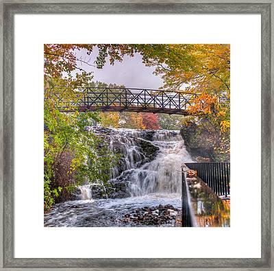 Mill Pond Park Framed Print