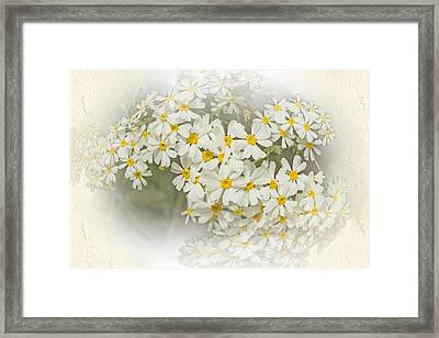 Millicent Framed Print