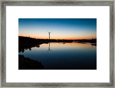 Millie At Sunrise Framed Print by Lee Costa