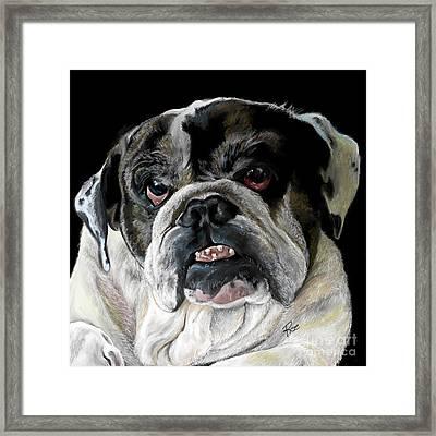 Millie The Bulldog Framed Print