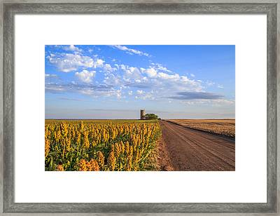Milo Road Framed Print