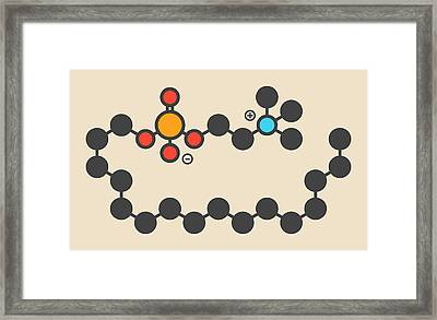 Miltefosine Leishmaniasis Drug Molecule Framed Print