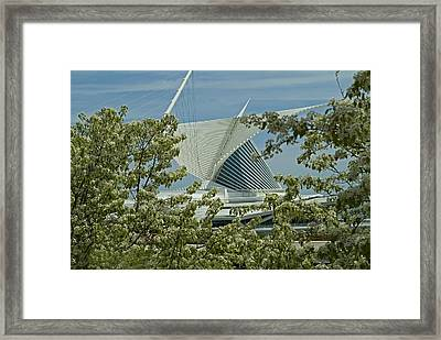 Milwaukee Art Museum Through Flowered Trees Framed Print by Devinder Sangha
