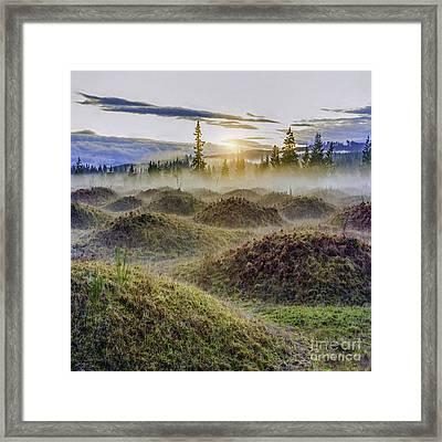 Mima Mounds Mist Framed Print