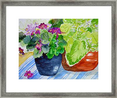 Mimi's Violets Framed Print