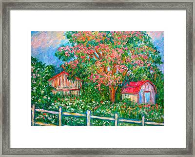Mimosa View Framed Print by Kendall Kessler