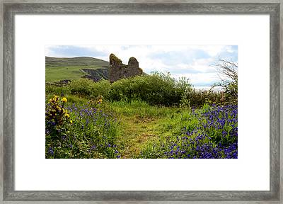 Minard Castle In Kerry Framed Print by Barbara Walsh