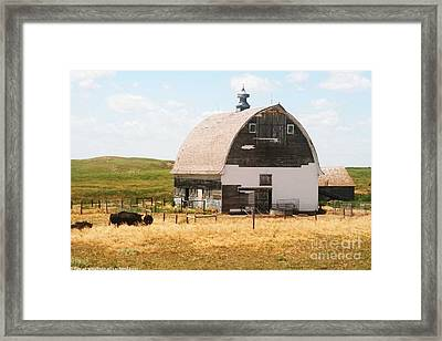 Minden Nebraska Old Farm And Barn Framed Print