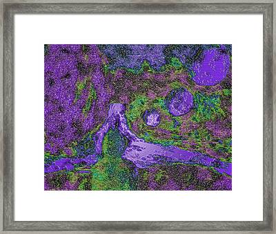 Mindfulness 1 Framed Print by Dorothy Berry-Lound