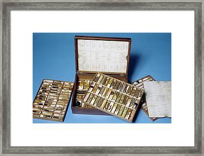 Minerals And Herbs Set Framed Print by Science Photo Library