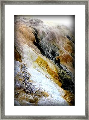 Minerals And Stream Framed Print