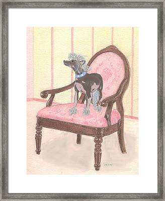 Ming Framed Print by Stephanie Grant