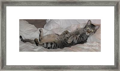 Ming With Slight Attitude Framed Print