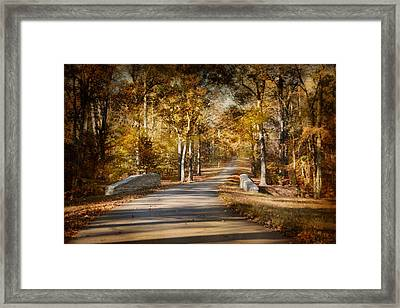 Mingling With Beauty Framed Print