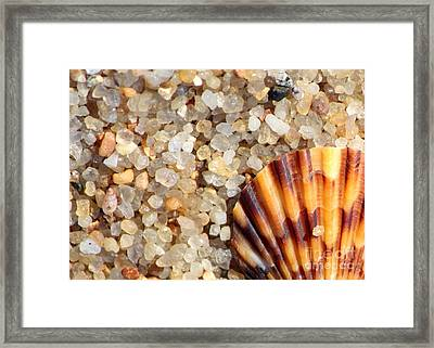 Mini Beach Vacation Framed Print