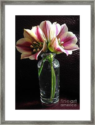 Mini Bouquet Framed Print