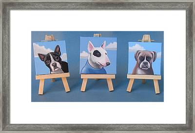 Mini Dog Portraits 2 Framed Print by Stuart Swartz