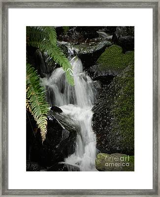 Mini Waterfall  Framed Print by Chalet Roome-Rigdon