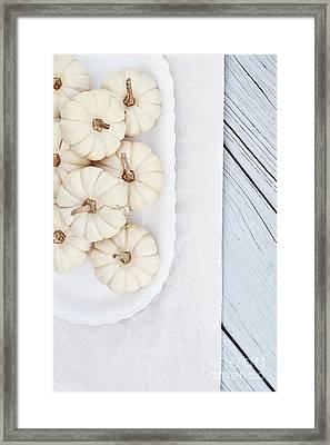 Mini White Pumpkins Framed Print by Stephanie Frey