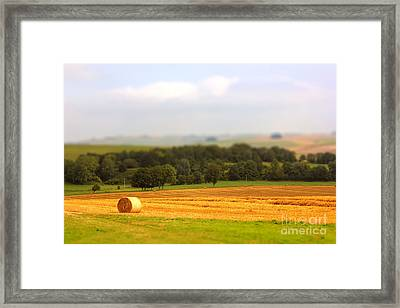 Miniature Countryside Framed Print by Vicki Spindler