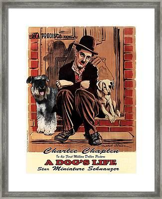 Miniature Schnauzer Art Canvas Print - A Dogs Life Movie Poster Framed Print