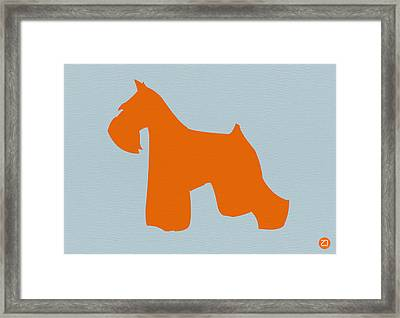 Miniature Schnauzer Orange Framed Print by Naxart Studio