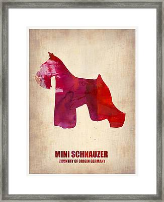 Miniature Schnauzer Poster Framed Print by Naxart Studio