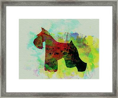 Miniature Schnauzer Watercolor Framed Print