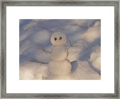Miniature Snowman Landscape Framed Print by Nancy Landry