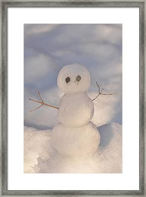 Miniature Snowman Portrait Framed Print by Nancy Landry