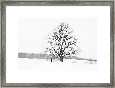 Minimal Winter Landscape With Man And Tree Framed Print