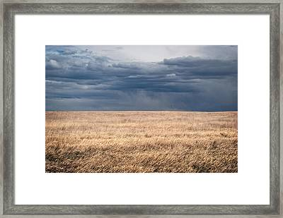 Minimalist Prairie Grassland With Stormy Sky Framed Print by Julie Magers Soulen